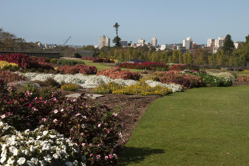 Panoramic view across park gardens to city skyline royalty free stock images