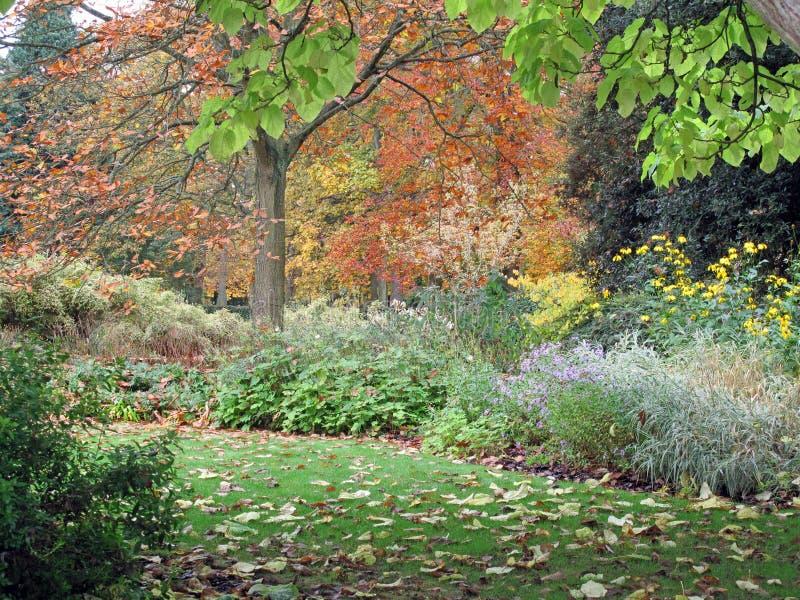 Autumn Garden View stock photo