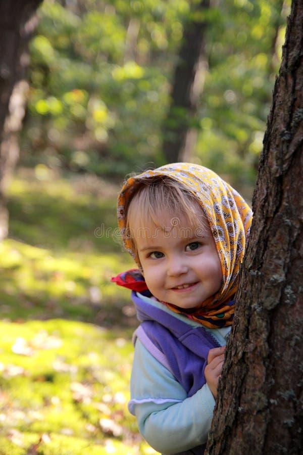 Download Autumn Girl Stock Image - Image: 11108771