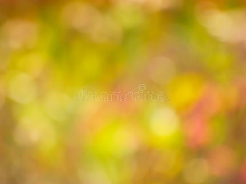 Autumn Gold Background - foto di riserva della sfuocatura fotografia stock
