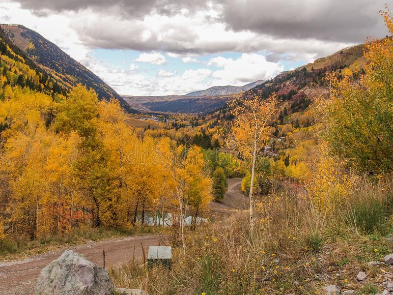 Autumn Gold en el San Juan Mountains imagenes de archivo