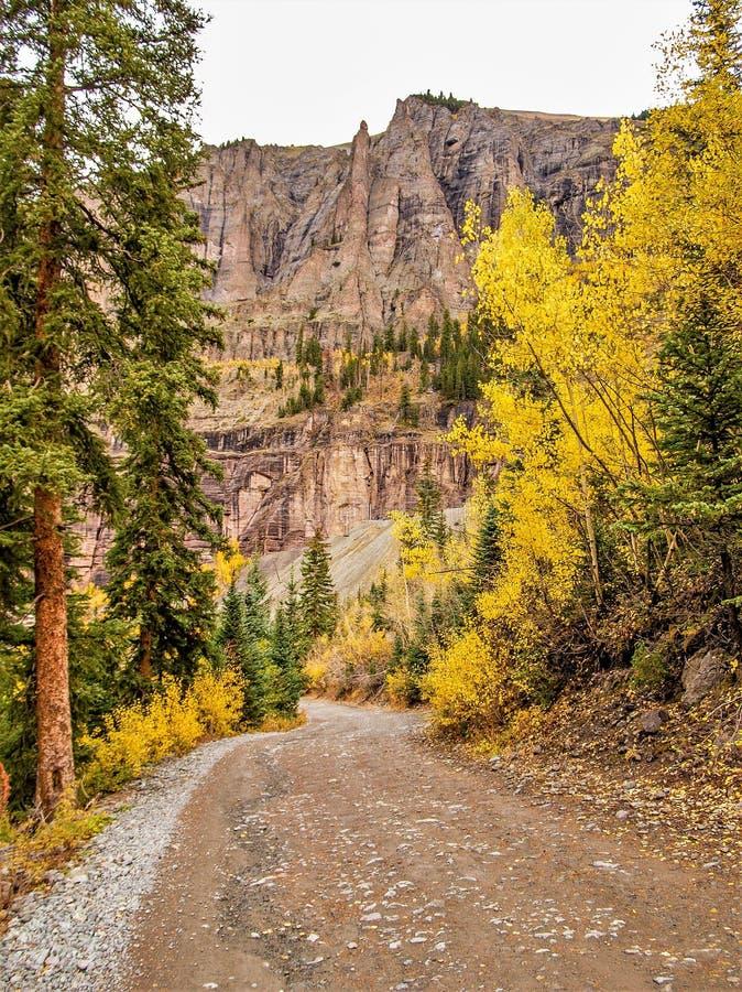 Autumn Gold en el San Juan Mountains imagen de archivo