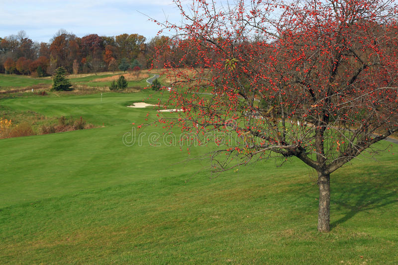 Download Autumn Golf Course stock photo. Image of competition - 27613768
