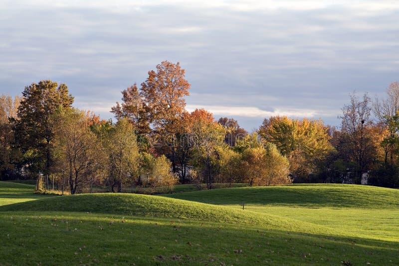 Autumn Golf Course Landscape
