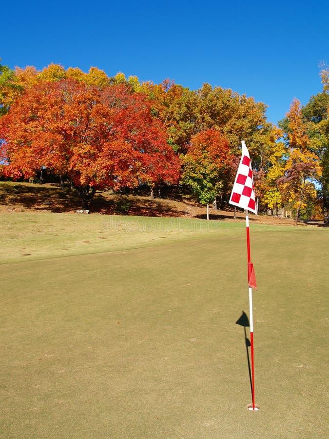 autumn golfa green zdjęcie royalty free