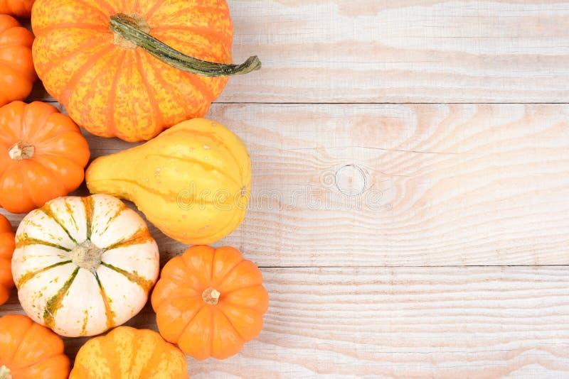 Autumn Gourd Still Life stockfotos