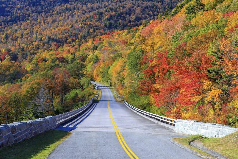 Autumn at Grandfather Mountain, North Carolina royalty free stock images