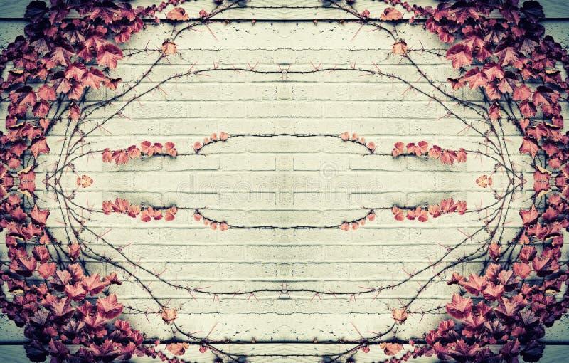 Autumn Grape Leaves Border Design lizenzfreie stockfotografie
