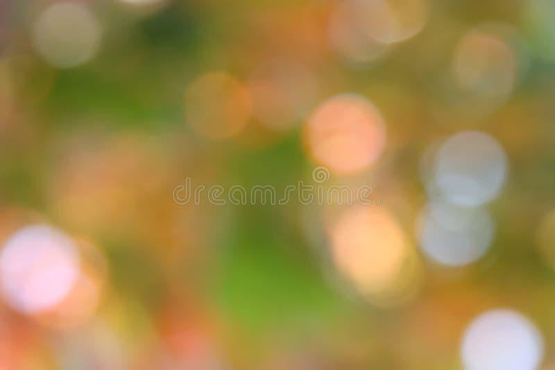 Autumn Green Background - foto di riserva della sfuocatura immagine stock libera da diritti