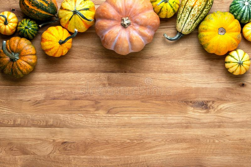 Autumn greeting card or background with blank space for a text royalty free stock photos