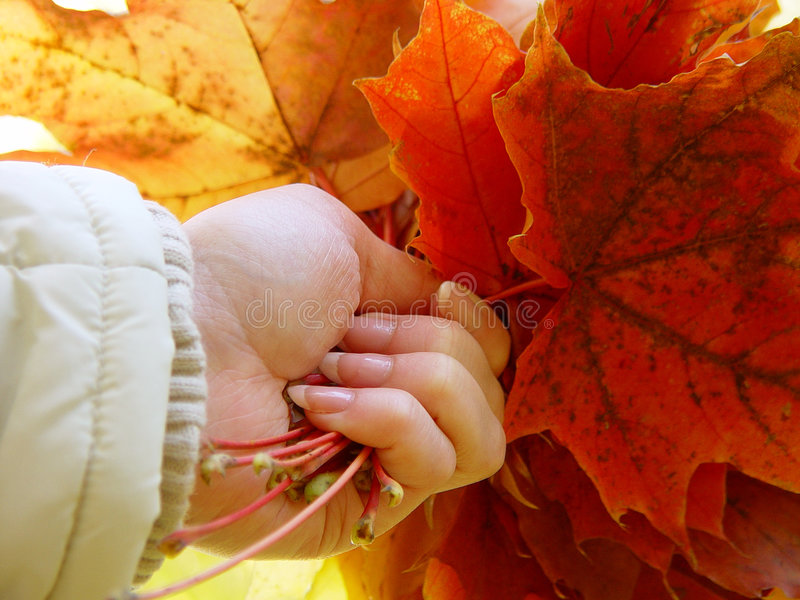 Autumn in the hand stock images