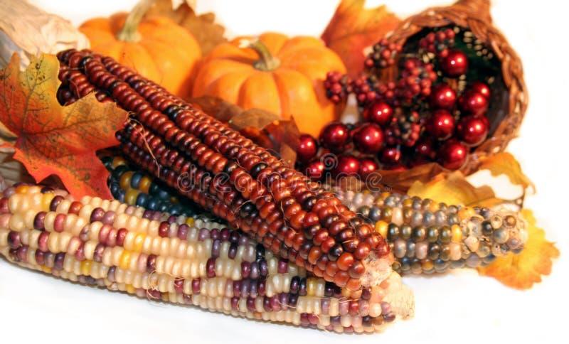 Download Autumn Harvest stock photo. Image of decor, corn, seasonal - 1333866