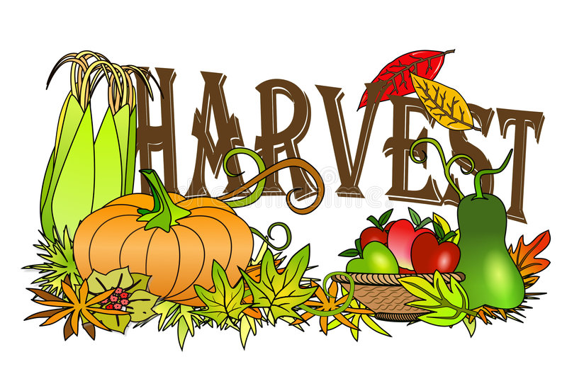 Autumn harvest. An illustration of autumn harvest concept with harvest text