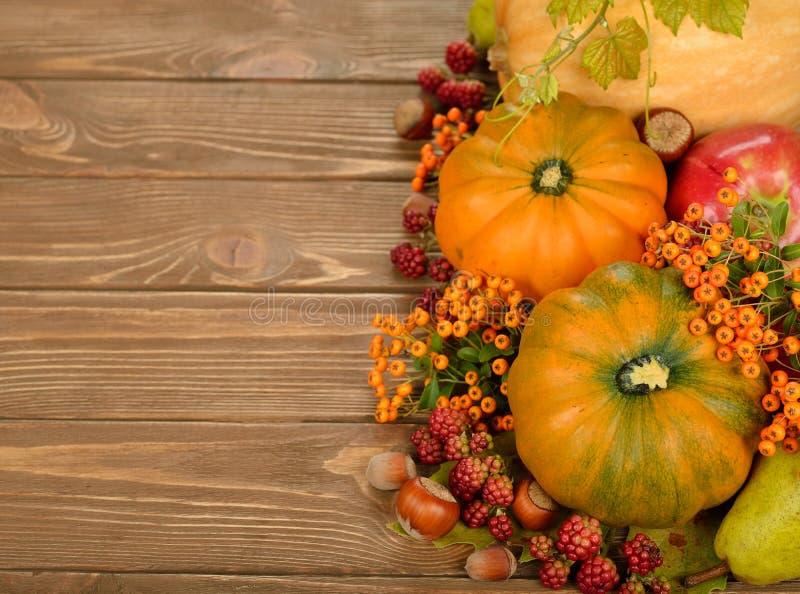 Autumn Harvest stock fotografie