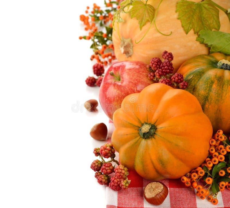 Autumn Harvest stock foto's