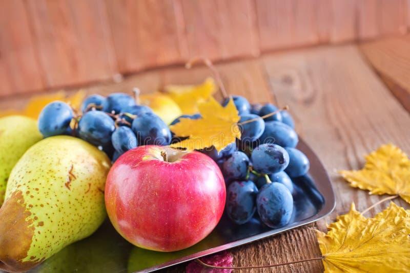 Autumn Harvest royalty-vrije stock afbeelding