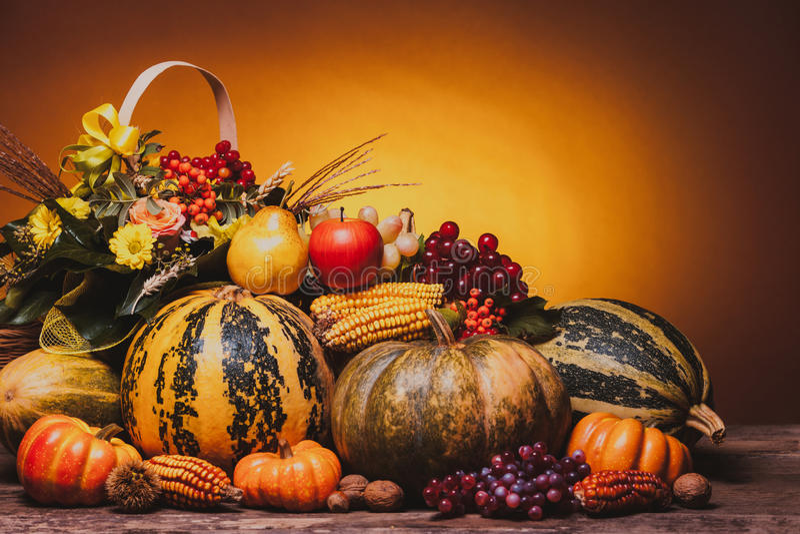 Autumn Harvest royalty-vrije stock fotografie