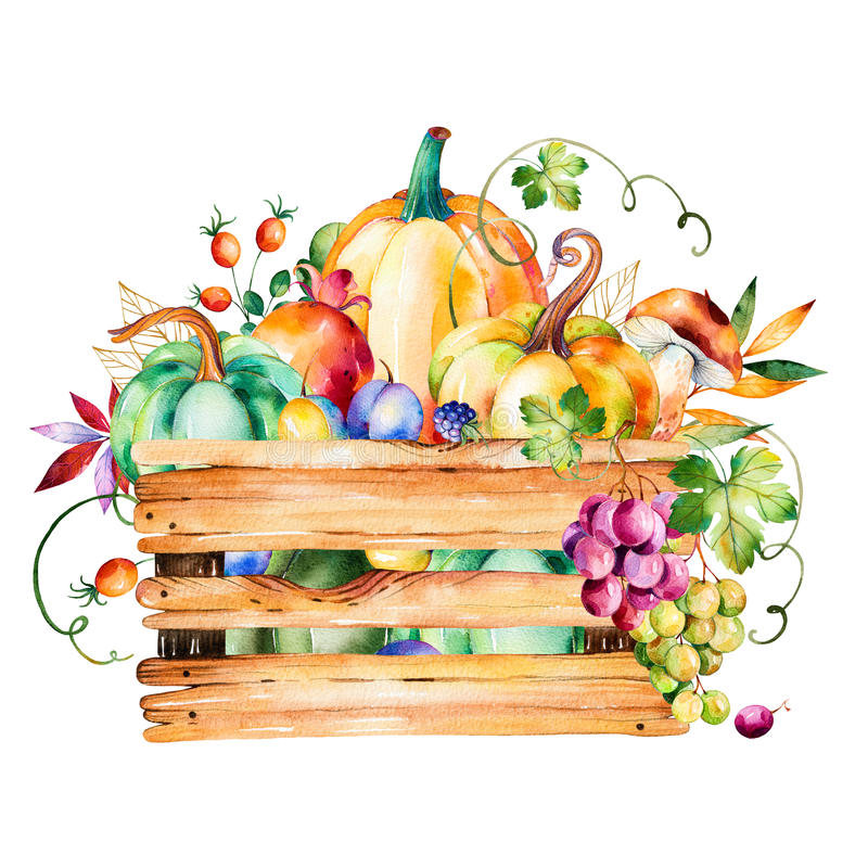 Autumn harvest basket with fall leaves,branches,berry royalty free illustration