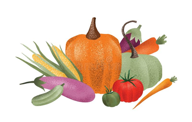 Autumn harvest composition. Ripe delicious vegetables isolated on white background. Gathered or collected crops. Natural vector illustration