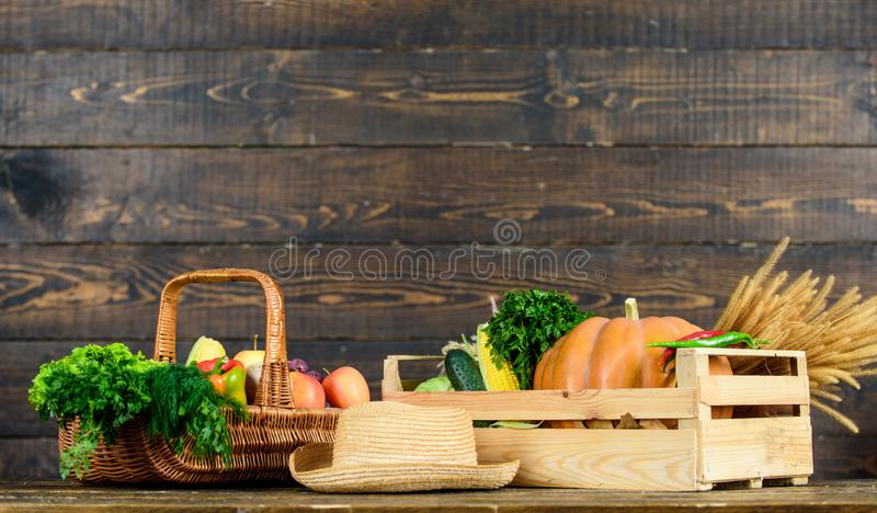 Autumn harvest crops vegetables. Locally grown natural food. Farmers market. Vibrant and colorful vegetables. Homegrown. Vegetables. Fresh organic vegetables royalty free stock photo