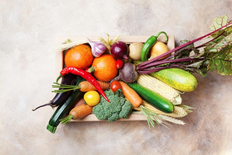 Autumn harvest farm vegetables and root crops on wooden box top view. Healthy and organic food. royalty free stock images