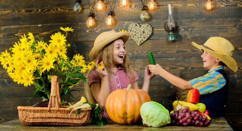 Autumn harvest festival. Children play vegetables pumpkin. Kids girl boy wear cowboy farmer style hat celebrate harvest royalty free stock image