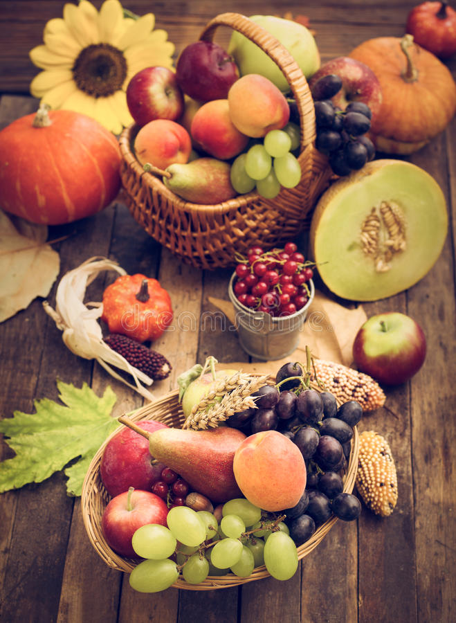 Autumn harvest - fresh autumn fruits royalty free stock photography