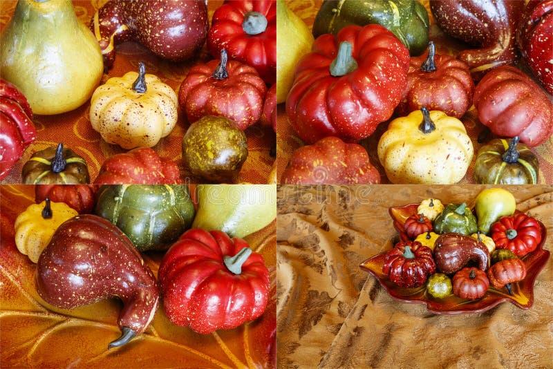 Autumn harvest gourds pumpkin decoration collage stock images