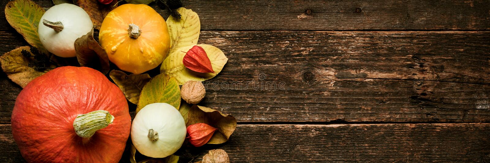Autumn Harvest and Holiday still life. Happy Thanksgiving Banner. Selection of various pumpkins on dark wooden background. Autumn vegetables and seasonal royalty free stock photography