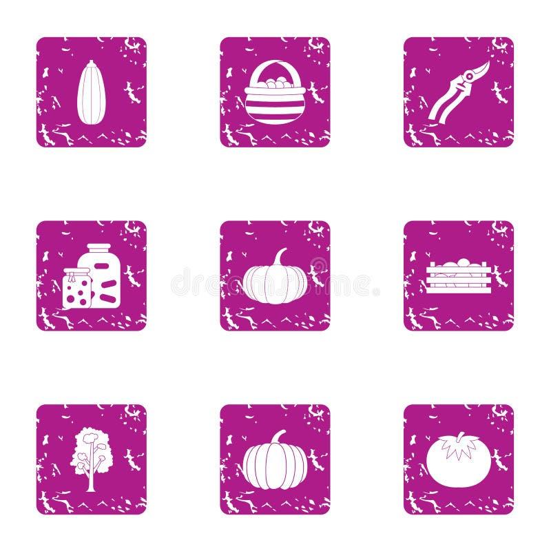 Autumn harvest icons set, grunge style. Autumn harvest icons set. Grunge set of 9 autumn harvest vector icons for web isolated on white background stock illustration