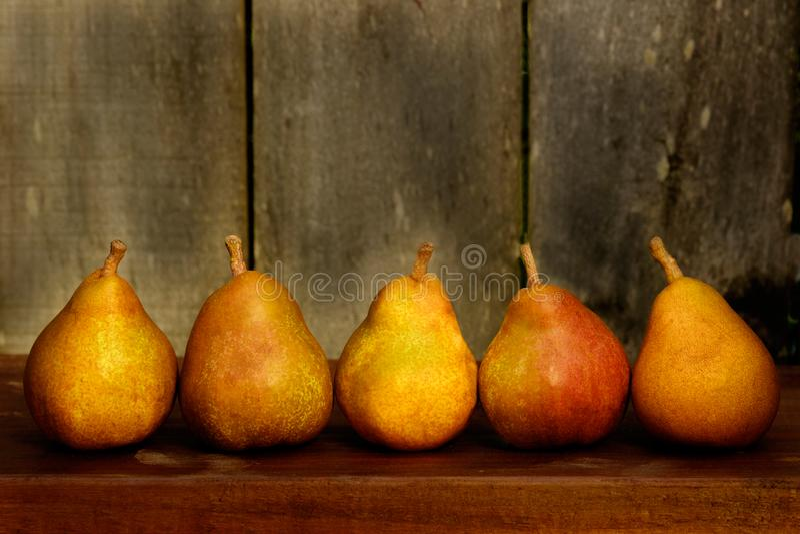 Autumn Harvest Pears colorido imagen de archivo