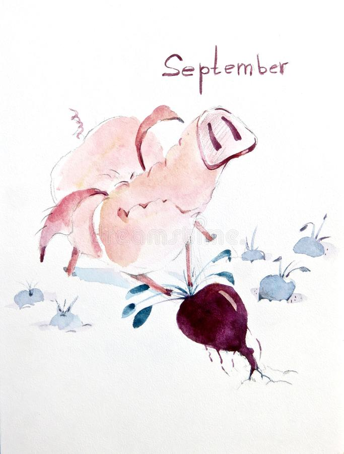 Autumn is harvest time for pigs. Autumn is harvest time even if you are a pig stock illustration