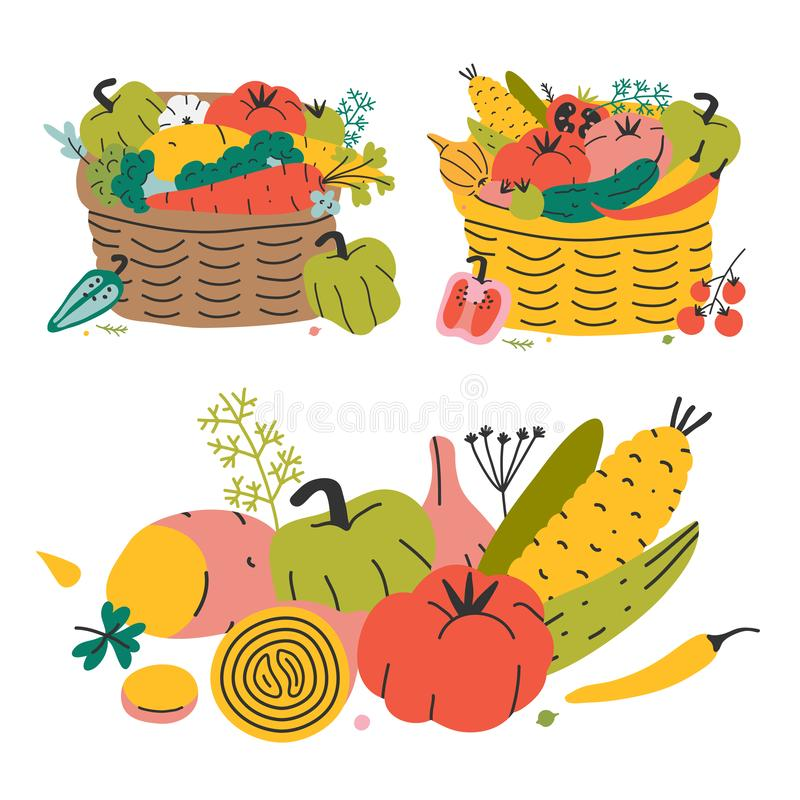Autumn harvest vegetales put in natural wicker basket for farming market or picknic. Concept of organic natural wholesome food. Va vector illustration