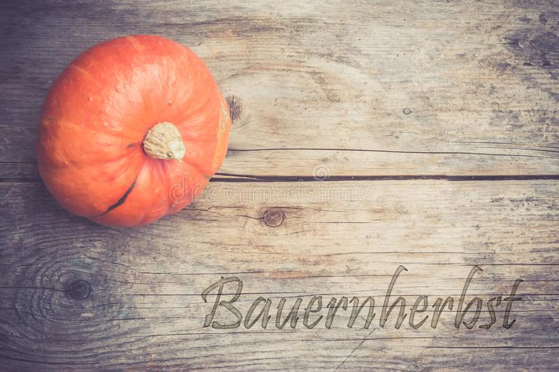 Autumn and harvesting: Pumpkin is lying on a rustic, wooden table.& x22;Bauernherbst. Orange pumpkin is lying on a rustic wooden table. & x22;Bauernherbst royalty free stock photos