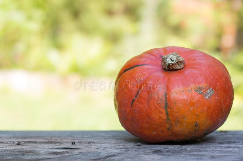 Autumn and harvesting: Pumpkin is lying on a rustic, wooden table. Text space. Orange pumpkin is lying on a rustic wooden table. Text space halloween fall autumn stock image