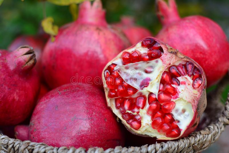 Pomegranate. S - best natural vitamins stock images