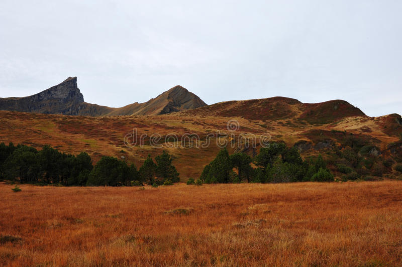 Download Autumn highlands stock image. Image of meadow, autumn - 27027305