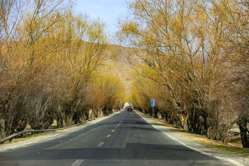 Autumn highway, yellow trees, yellow mountains, beautiful scenery stock photography
