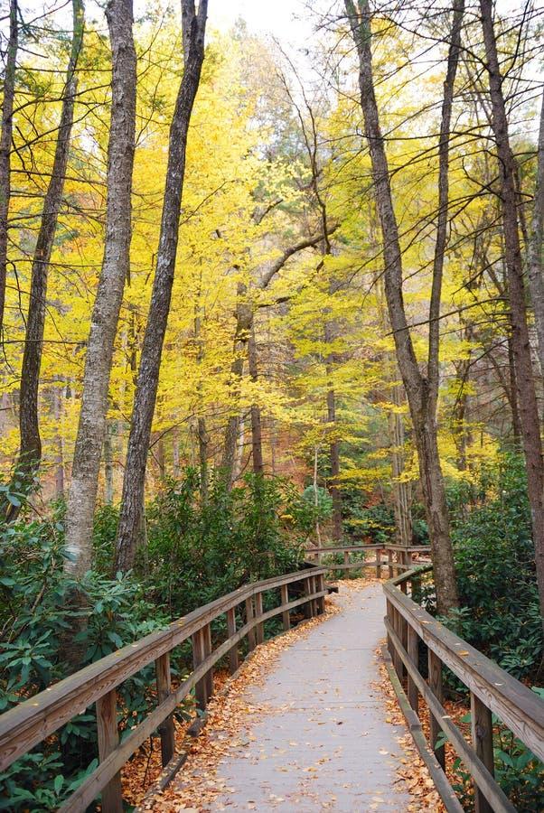 Autumn hiking trail royalty free stock photo