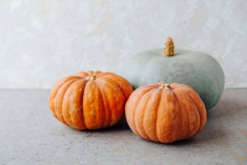 Autumn holiday still life with pumpkins. Copy space for text. Thanksgiving, Halloween preparations. Healthy seasonal food. Fall. Harvest royalty free stock images