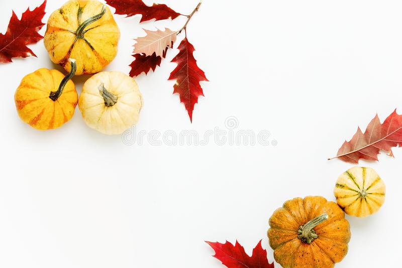 Autumn holidays background with copy space for a greeting text royalty free stock photo