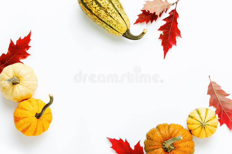 Autumn holidays background with copy space for a greeting text stock photo