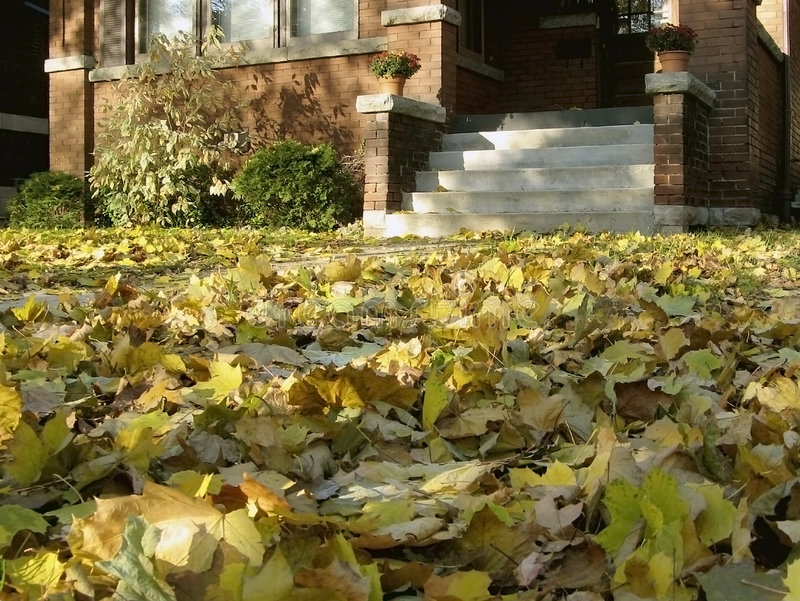 Download Autumn Home stock image. Image of visit, house, maple - 3180491