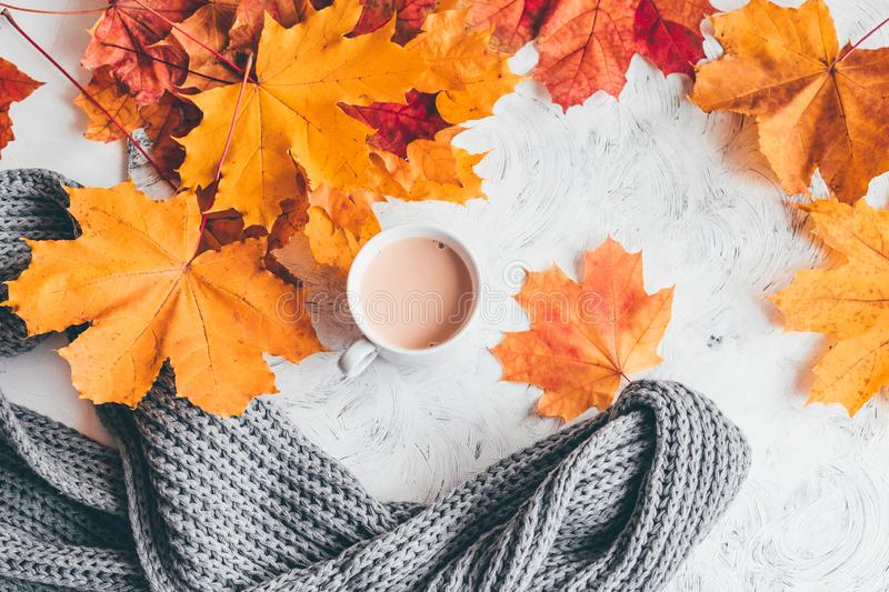 Autumn home cozy composition a cup of coffee with maple leaves. Top view royalty free stock photography