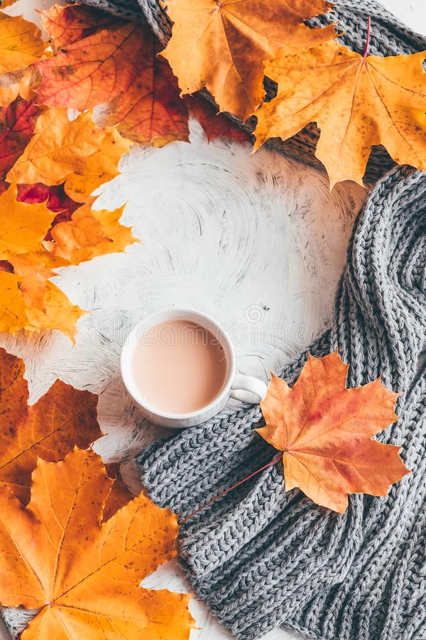 Autumn home cozy composition a cup of coffee with maple leaves. Top view stock photography