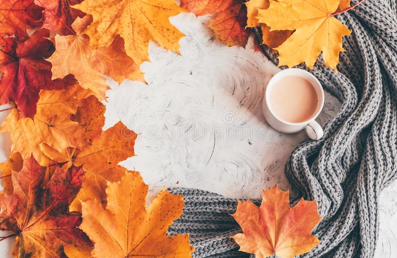 Autumn home cozy composition a cup of coffee with maple leaves. Top view stock image