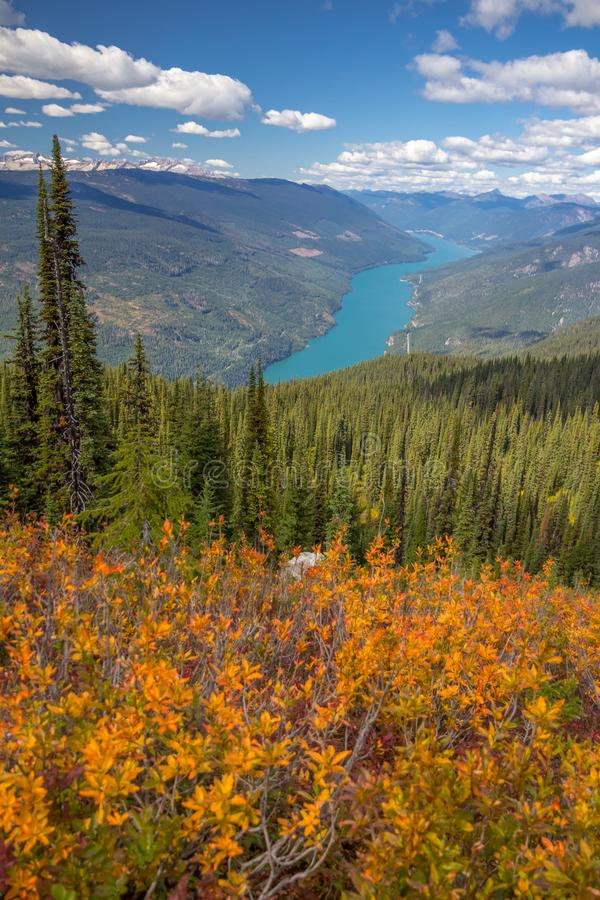 Free Autumn In Mount Revelstoke National Park, Canada.  Eagle Knoll Trail Royalty Free Stock Photography - 155149437