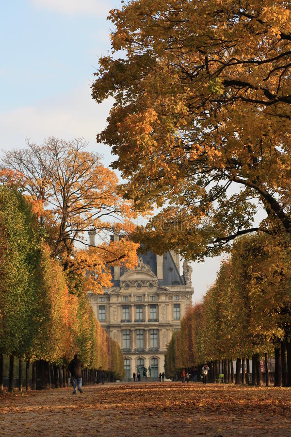 Free Autumn In Paris Royalty Free Stock Image - 12809466