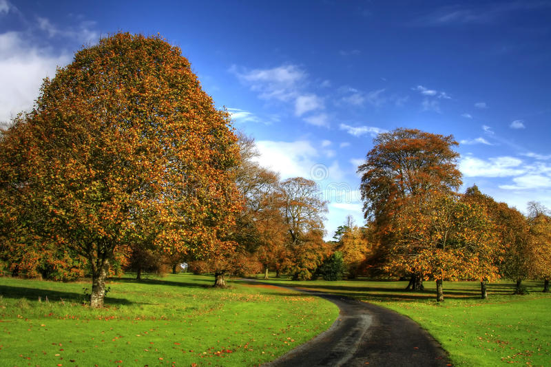 Download Autumn in Ireland stock photo. Image of clouds, field - 13972428
