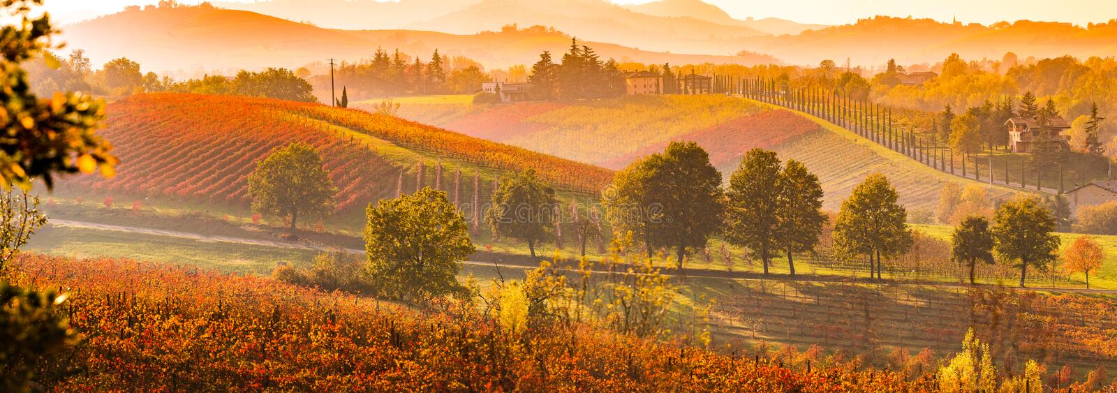 Autumn in Italy. Castelvetro, Modena, Emilia Romagna, Italy. Sunset over the vineyards and rolling hills in autumn royalty free stock images